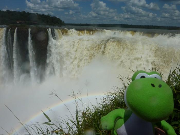 Yoshi @ Iguazu