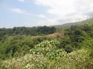 Vue au pied du Mont Rinjani