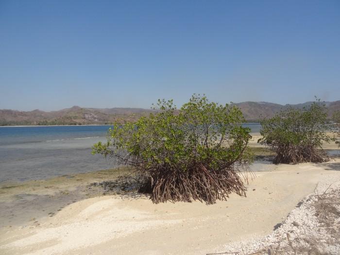 La plage de Madak Belo